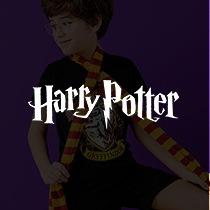 Produtos Harry Potter